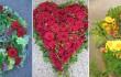 floristik_collage